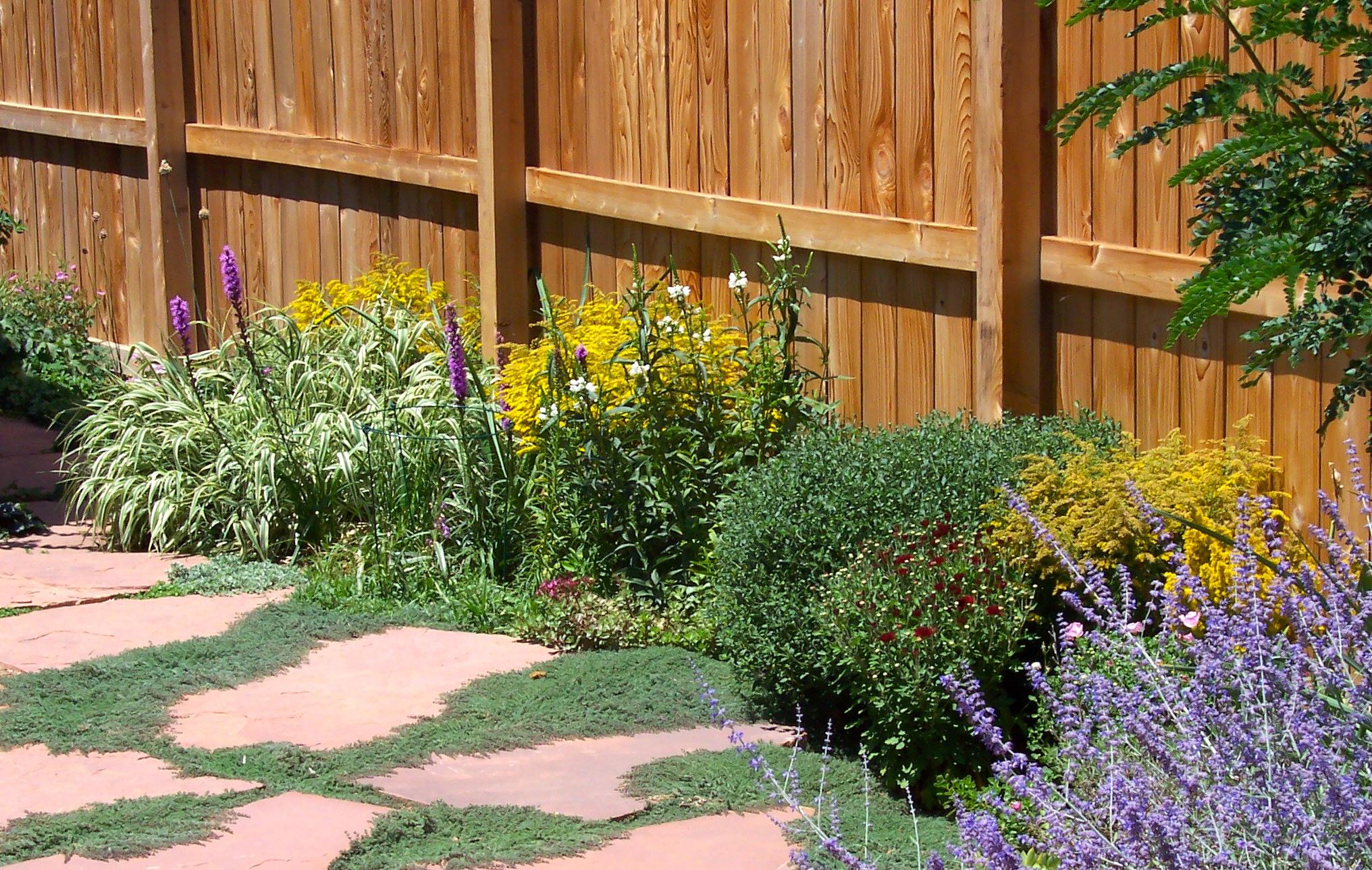How To Design A Backyard Wildlife Habitat Welcome Wildlife
