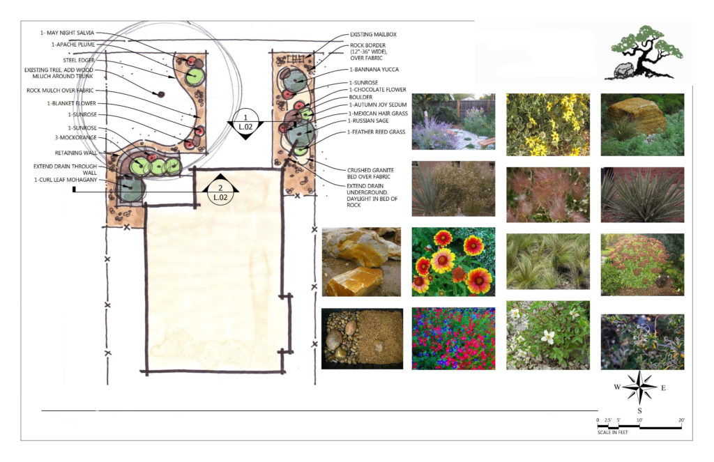 Landscape plan drawn in color, along with photos of suggested plants.