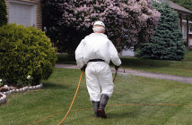 Pesticide technician walking on mowed lawn and dragging a long yellow hose behind him. He's fully covered by a white uniform, high black boots, black gloves and white hat.