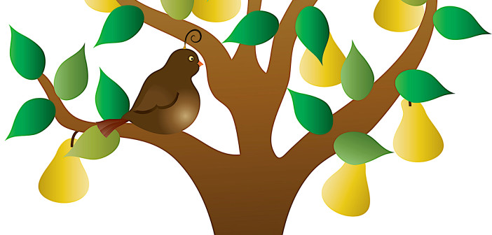 Color illustration of a stylized tree with yellow pears and green leaves and a brown partridge perched on a limb.