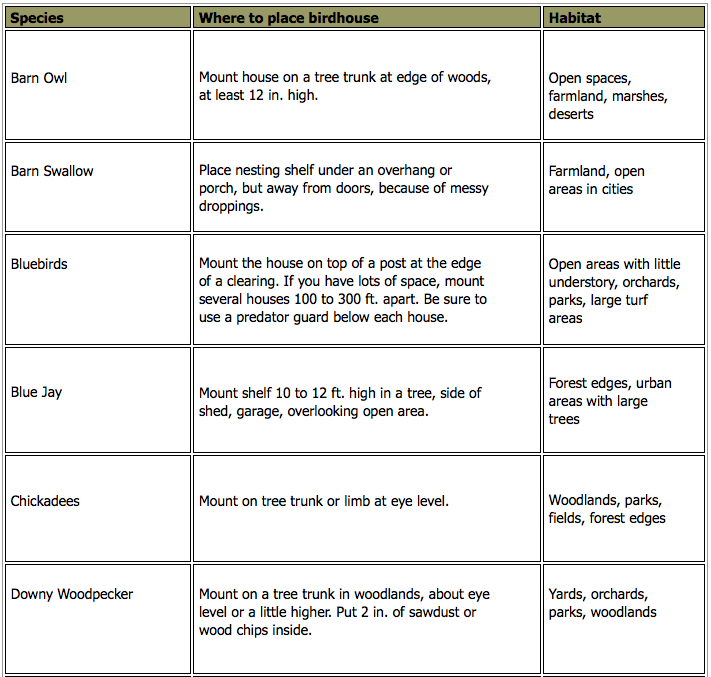 Birdhouses chart 1