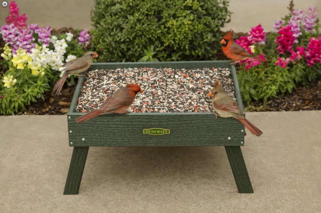 Duncraft product photo of Cardinals perched on a ground feeder with seed in it.