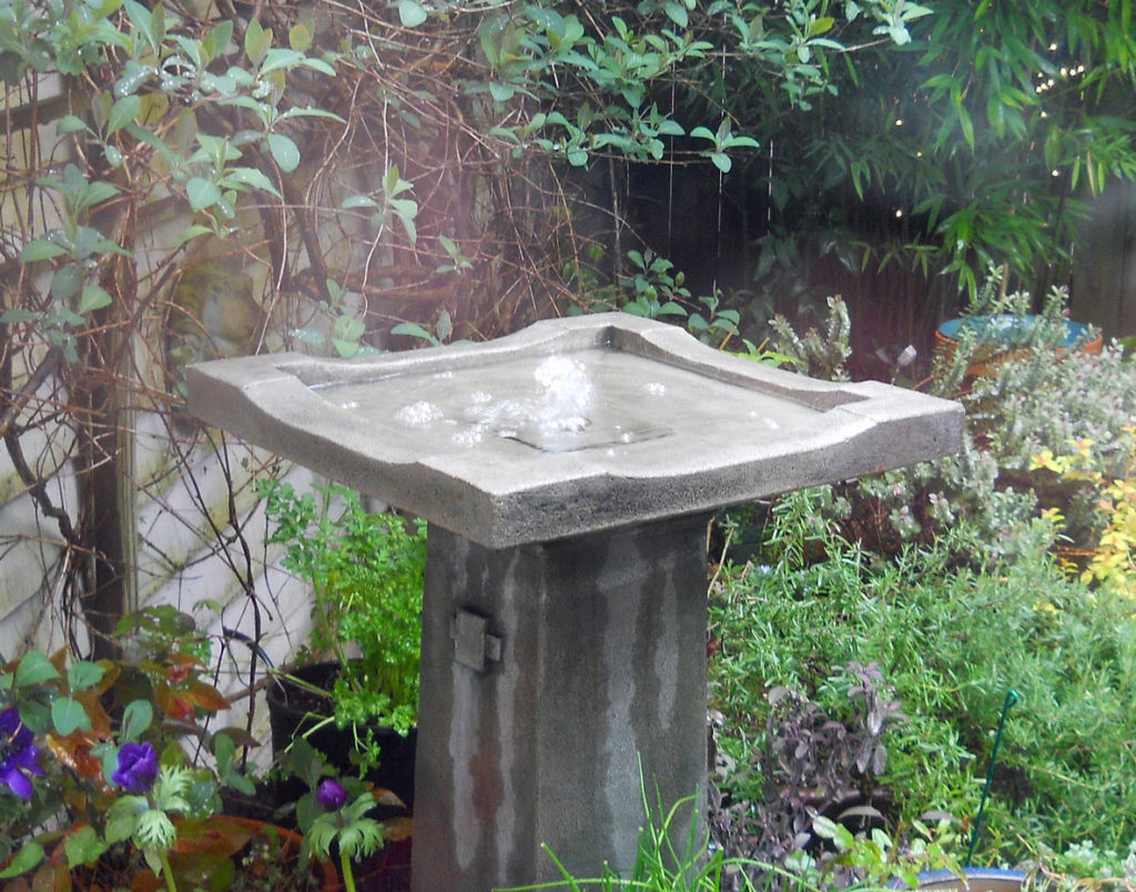 Image of birdbath with bubbling water.