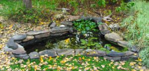 Small triangular-shaped pond bordered by large, dark, flat stones.