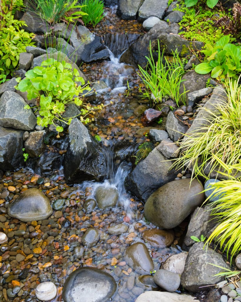 A gently bubbling brook with pebbles lining the bottom.