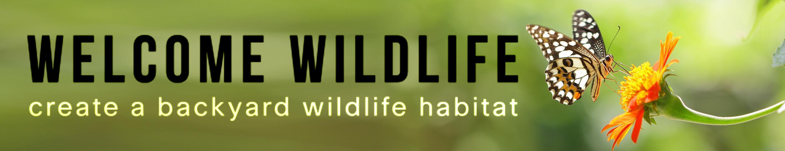 Welcome Wildlife